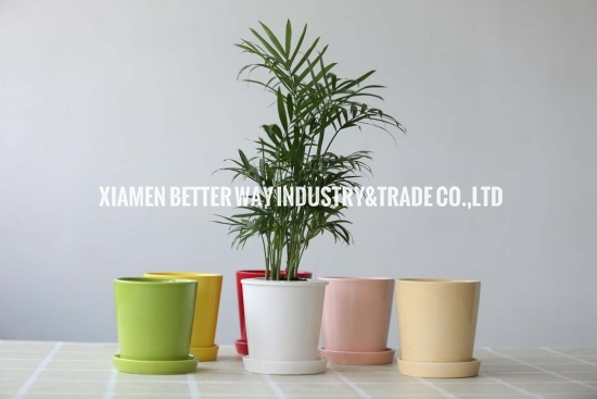 Modern Style Ceramic Flower Planter With Saucer
