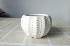 White Ceramic Pots With Small Dots