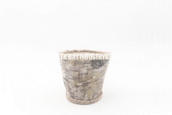 birch tree flower vases